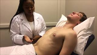 Performing a cardiovascular system examination [Group Q 2017]