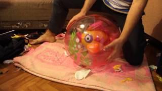 getlinkyoutube.com-Sit pop beach ball