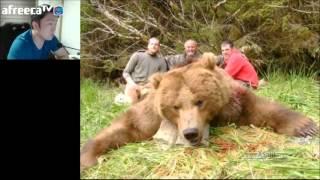 getlinkyoutube.com-혐오주의) 캐나다 식인곰 코디악베어 ㄷㄷ캐나다 가기전 알아야할 위험동물
