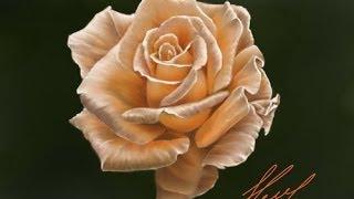 getlinkyoutube.com-Рисуем цветок (Роза)