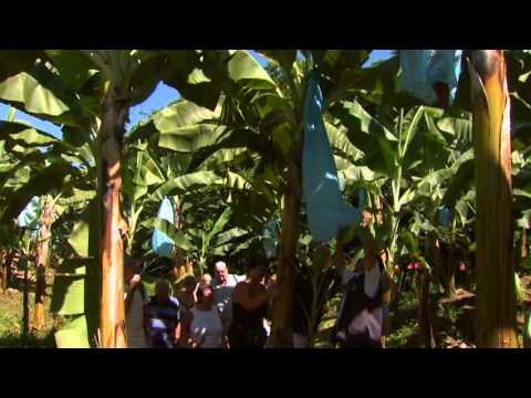 Costa Rica Pura Vida - Costa Rica Caribbean