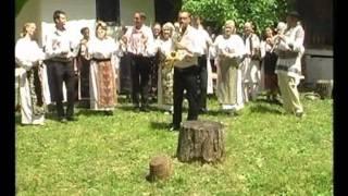 getlinkyoutube.com-GABI  MODI  - colaj hore din banat - instrumental
