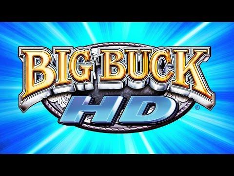 Big Buck HD (ARC)  © Raw Thrills 2012   1/1