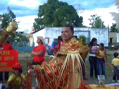 carnavales 2009 caicara de maturin