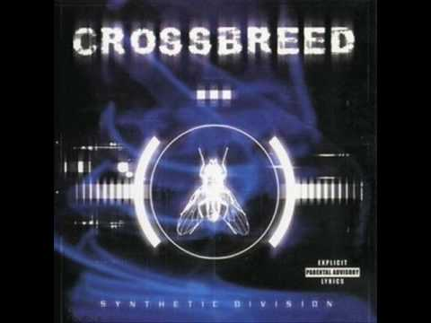 Concentrate de Crossbreed Letra y Video