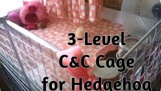 getlinkyoutube.com-*Hedgehog Cage Tour & How to Build a C&C Cage for hedgehog