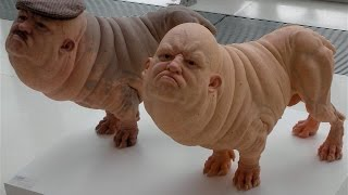 getlinkyoutube.com-17 Weird Human Hybrid Animals