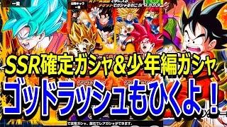 【ドッカンバトル】SSR確定ガチャと少年編ガチャとゴッドラッシュガチャを引く!【ドカバト】