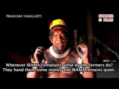PIRAKUMA YAWALAPITI_money, greed, carbon trading, dams, FUNAI, IBAMA