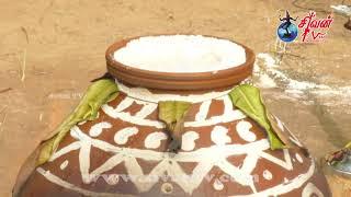 சிவபுரவளாகத்தில் மிகப்பிரமாண்டமாக  சிவன் தொலைக்காட்சியும் அன்பே சிவமும் இணைந்து நடாத்திய இன்பத்தமிழ் பொங்கல்