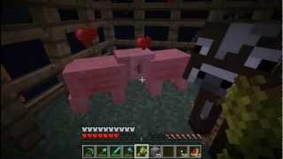 getlinkyoutube.com-Minecraft Sky Islands (PL) part 4 - Farma pszenicy oraz świnie!
