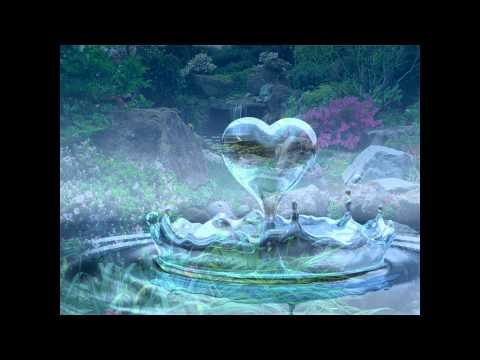 Momento Espírita - Um Novo Amanhecer