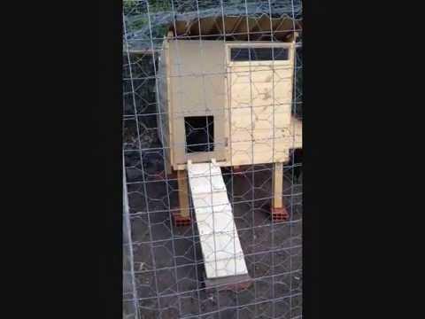 Come costruire una voliera per allevare polli fai da te for Conigliera da interno