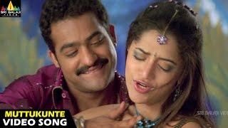 Yamadonga Songs | Nuvvu Muttukunte Video Song | Jr NTR, Mamta Mohandas | Sri Balaji Video