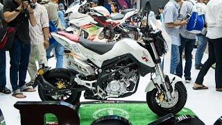 đối thủ z125 pro, Honda Msx - Benelli TNT 135 mini street bike 135cc ra mắt