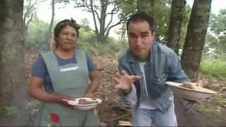 getlinkyoutube.com-Carne de Res Asada en Comal, La Ruta del Sabor, San Pedro Benito Juarez en Puebla
