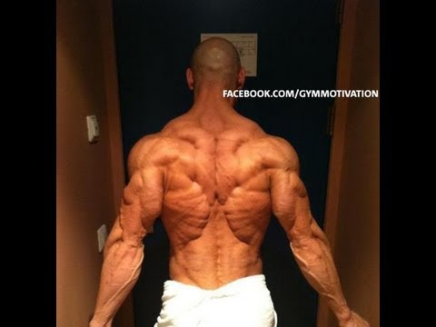 Bodybuilding Motivation  Prevail CutAndJacked.com