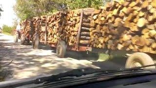 getlinkyoutube.com-Traktor sa 25 metara drva , tractor with 25 m3 woods , IMT 539