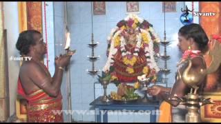பருத்தி நகர் பழவத்தை காளி அம்மன் கோவில் தேர்த்திருவிழா