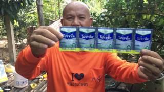 getlinkyoutube.com-มะนาวนอกฤดู กับการใช้สารเคมีป้องกันกำจัดแมลง