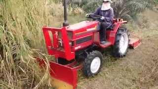 รถไถเล็กตัดหญ้าในสวนปาล์ม
