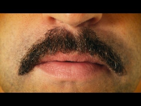 How To Kill a Mustache