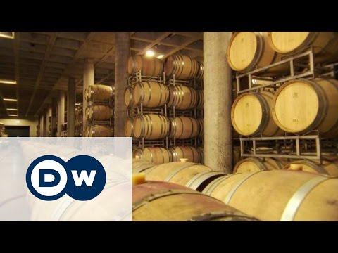 Вино с любовью к дизайну