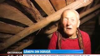 getlinkyoutube.com-O bătrână din Botoşani s-a trezit cu dubele cu poliţişti la poartă pentru că şi-a umplut te