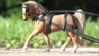getlinkyoutube.com-Moja stajnia koni Schleich - Stajnia_High_Waist
