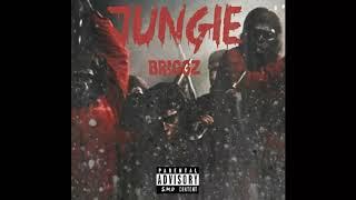 xXx Jungle xXx  Prod. By Roca Beats