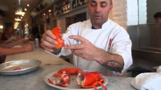 getlinkyoutube.com-How to Crack Open Lobster with Chef Ed McFarland
