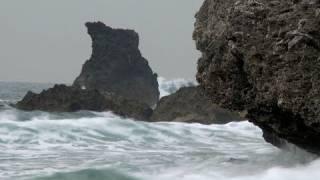 getlinkyoutube.com-Marine Reserves for Taiwan - Greenpeace