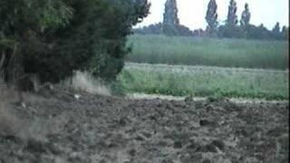 getlinkyoutube.com-rabbit shooting s410 and .22