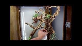 getlinkyoutube.com-Custom Built Chameleon Cage Vivarium - Ambilobe Panther Chameleons