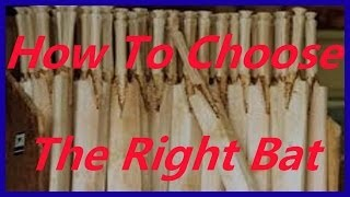 buying cricket bats & the difference between kashmir willow & english willow cricket bats