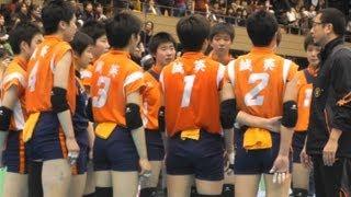 春高バレー 下北沢成徳 東京 vs 誠英 山口 女子決勝 2013.1.13