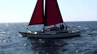 getlinkyoutube.com-WDsailing Wharram - TIKI 30 sailing