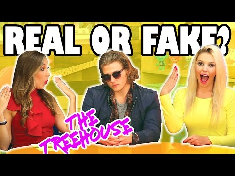 Real or Fake Harry Styles. The Treehouse Show for Kids with Slime and Animal Rescue Totally TV