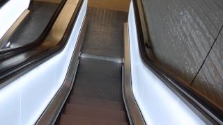 getlinkyoutube.com-Going out of ICMm 4235 & Riding several new Kone escalators @ Amsterdam Central Railroad Station