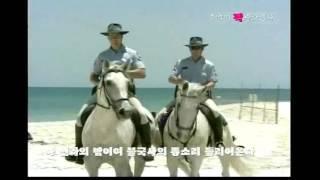 getlinkyoutube.com-추억의짝관광열차 디스코종합 DVD  윤성기획 캬바레 콜라텍 무도장 음악