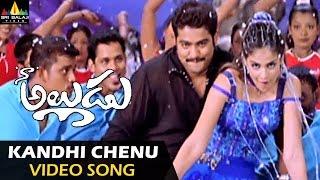 getlinkyoutube.com-Naa Alludu Video Songs | Kandhi Chenu Kada Video Song | Jr.NTR, Shriya, Genelia | Sri Balaji Video