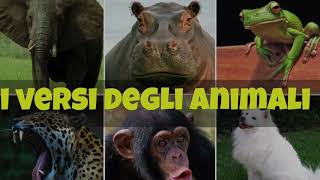 getlinkyoutube.com-i Versi degli Animali per bambini !