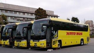 東京はとバスツアー2013