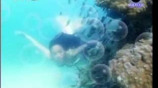 getlinkyoutube.com-คนทะเล (2549)