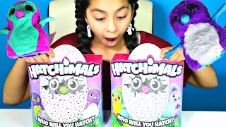 getlinkyoutube.com-2 HATCHIMALS Huge Magic Eggs|| B2cutecupcakes