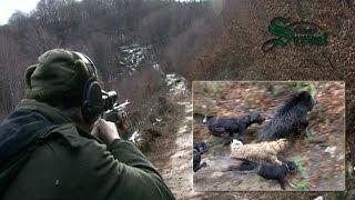 getlinkyoutube.com-Wild Boar hunting in Bulgaria - part 2