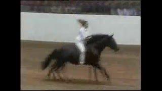 getlinkyoutube.com-Mad Horse