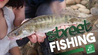 Pêche au leurre : brochet, sandre et perche en plein Lyon - [Street Fishing FISHARE]