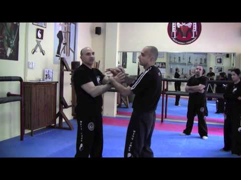 Double-arm Chi Sao - Part 2 - May 2011 Wing Chun Workshop by Master Michael G Papantonakis