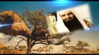 getlinkyoutube.com-شيلة شيخ القروم - كلمات الشاعر / سعد هيال - أداء المنشد / فلاح المسردي